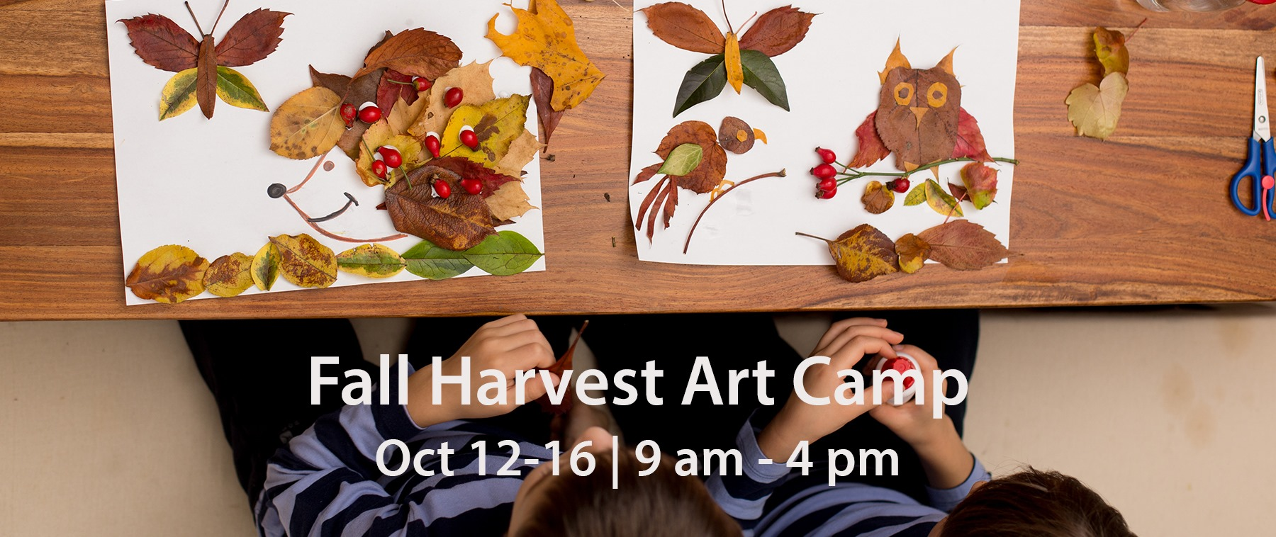 Fall Harvest Art Camp