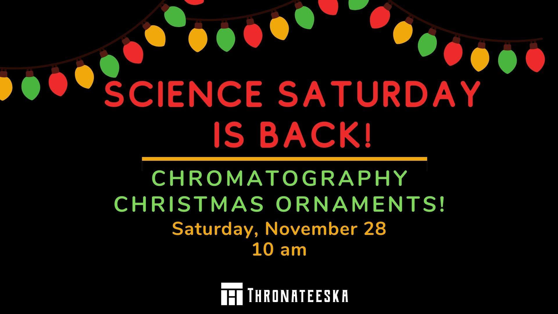 Science Saturday: Chromatography Christmas Ornaments