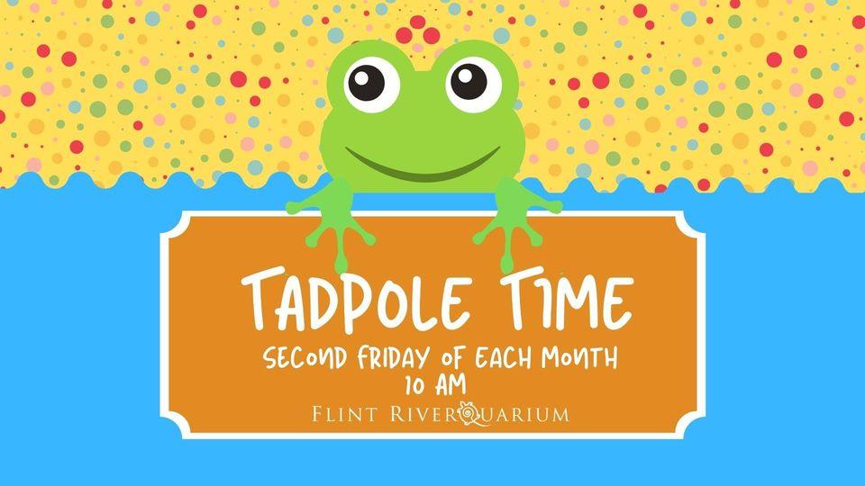 Tadpole Time