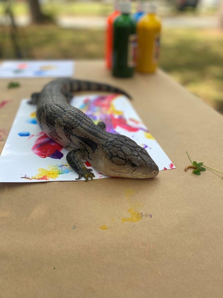Art in Nature Summer Camp
