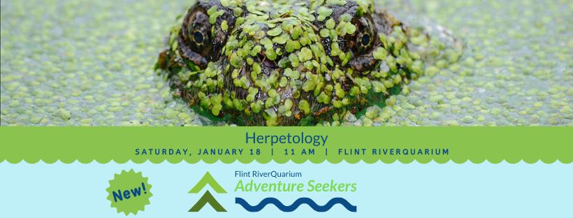 Adventure Seekers: Herpetology