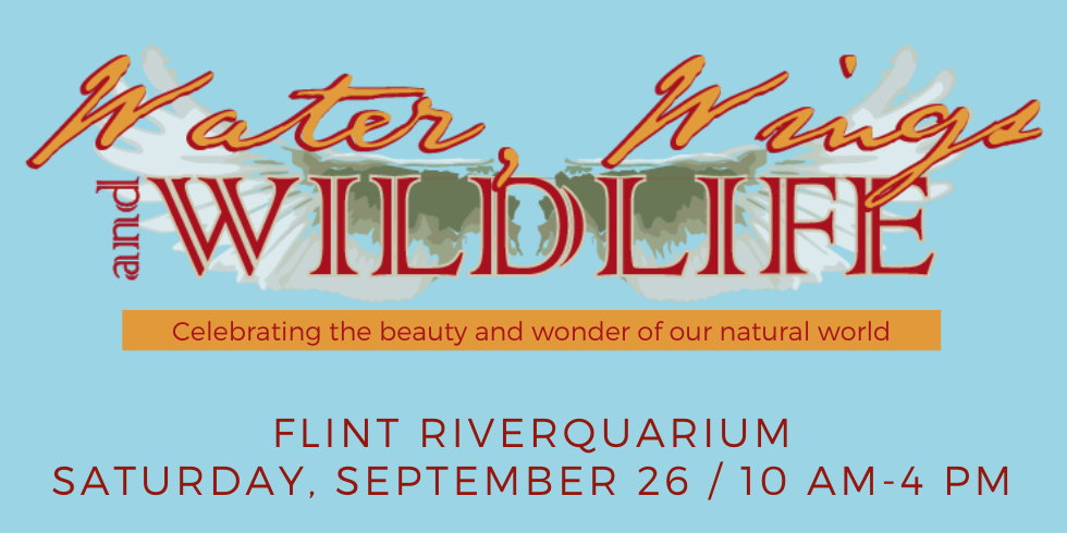 Water, Wings & Wildlife Festival