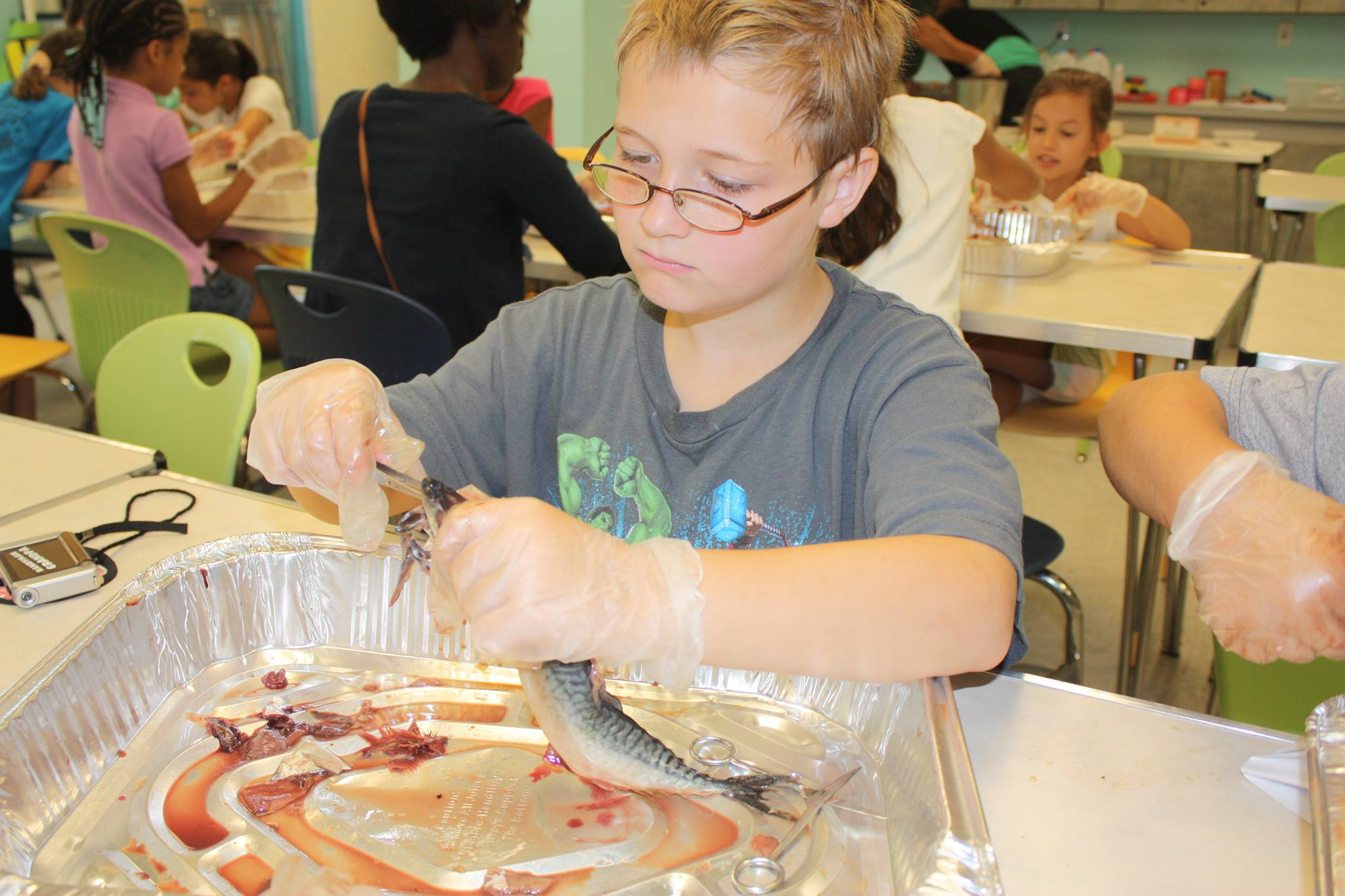 Summer Camp: Food Science