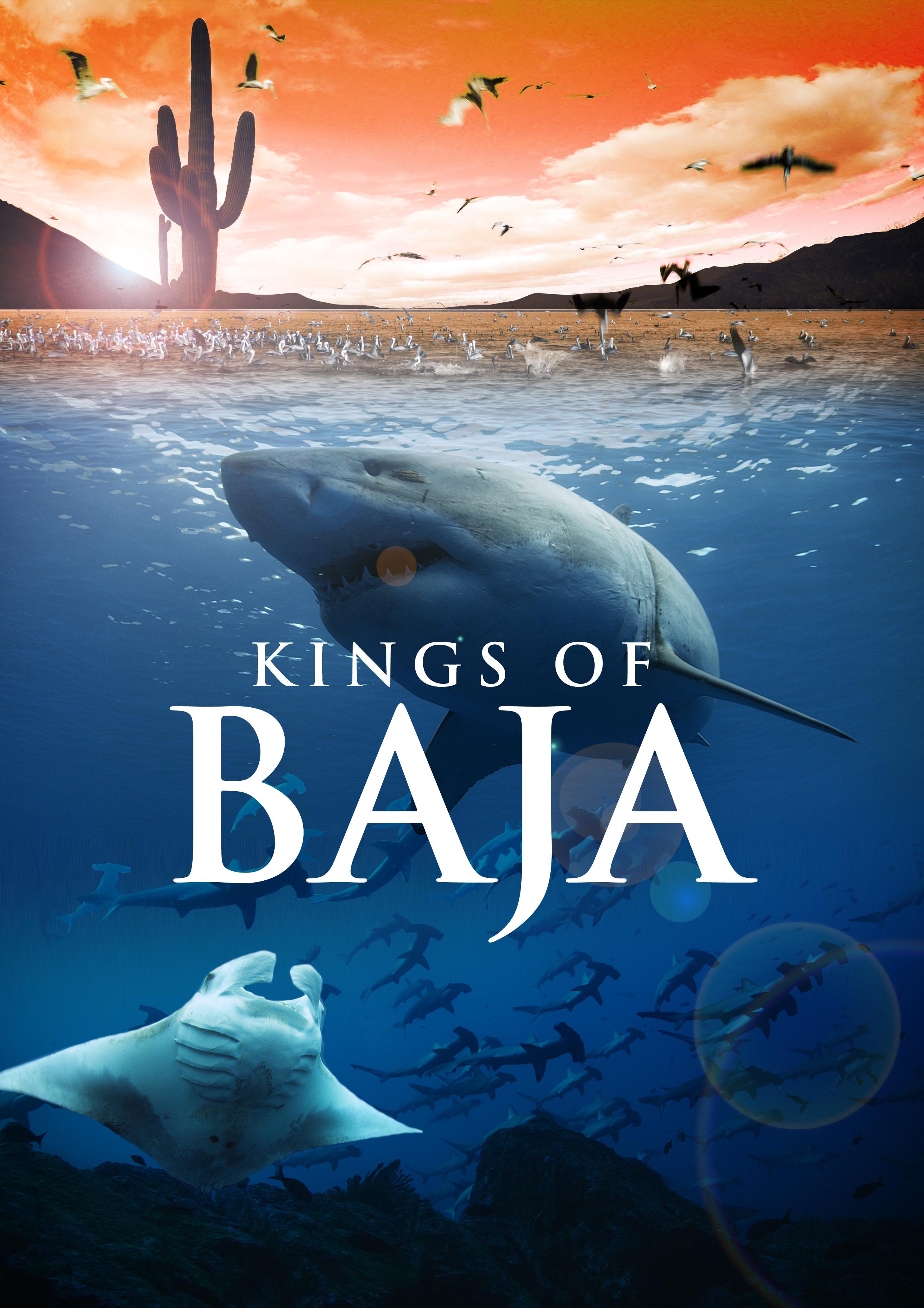 Imagination Theater- Kings of Baja