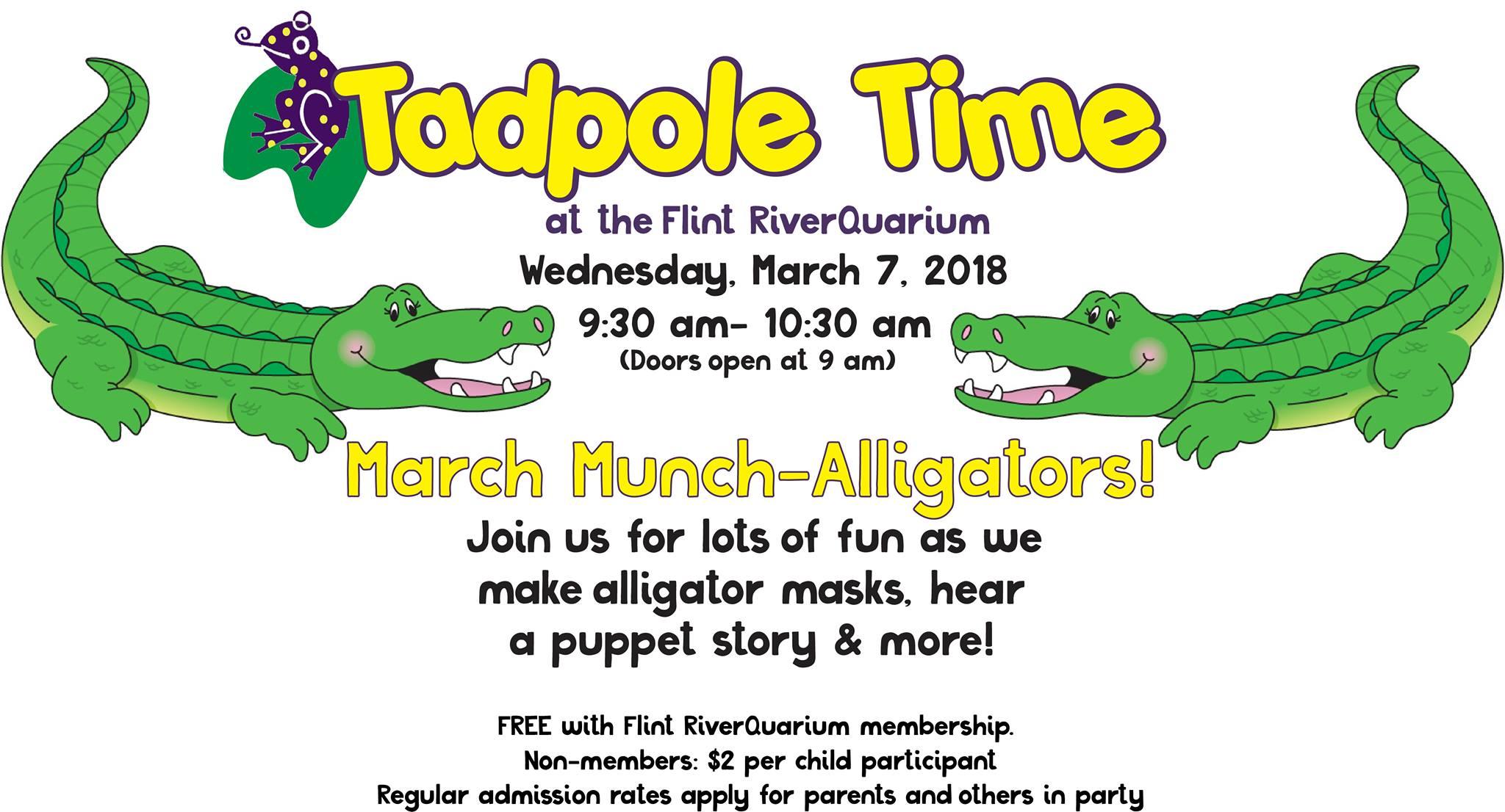 Tadpole Time: March Munch-Alligators!