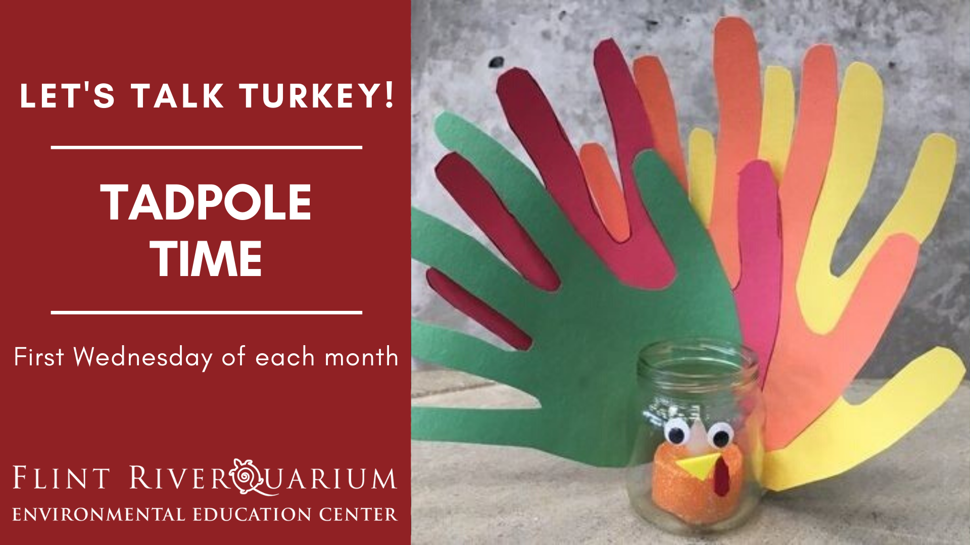 Tadpole Time: Let's Talk Turkey!