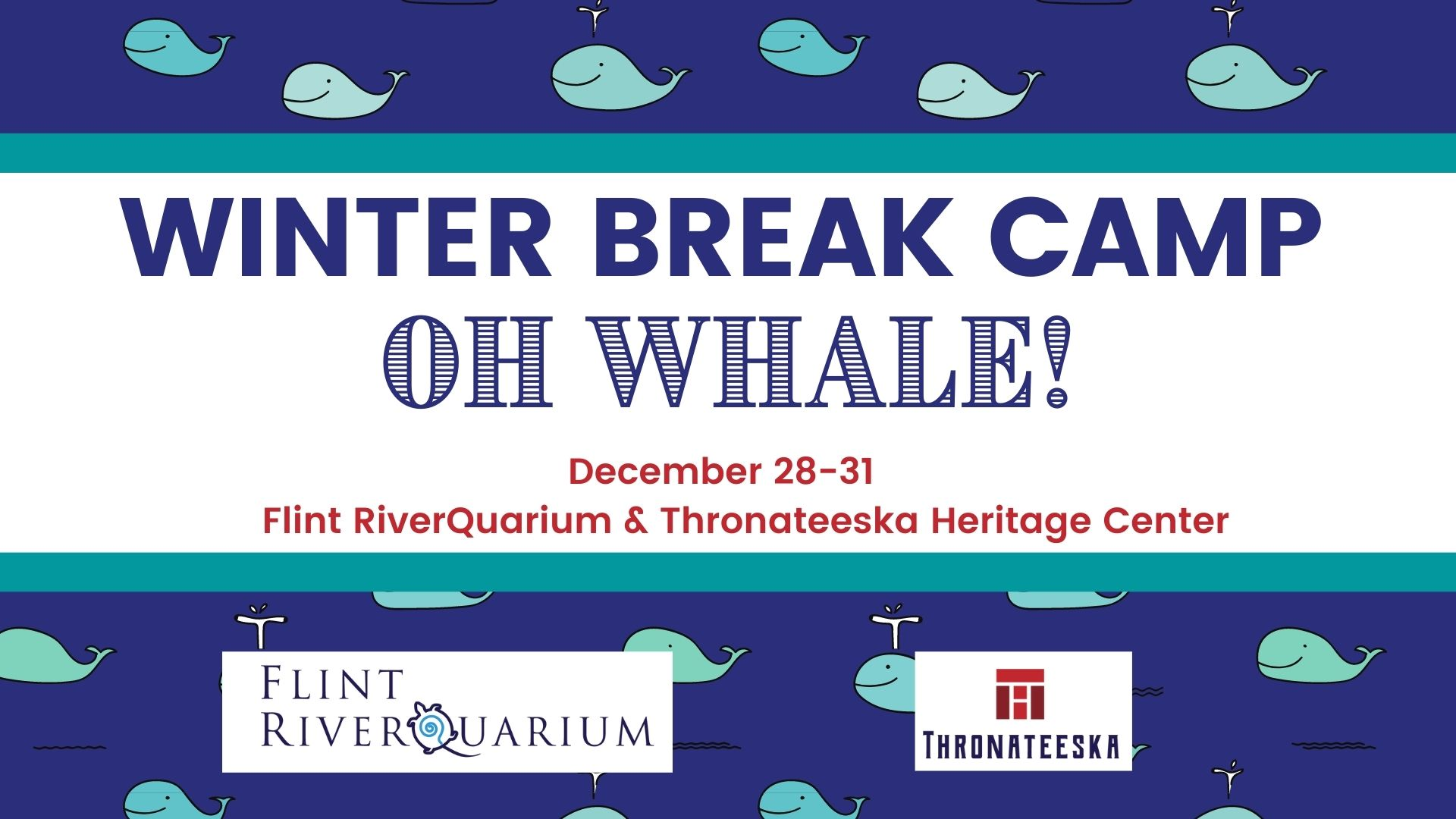 Winter Break Camp: Oh Whale!